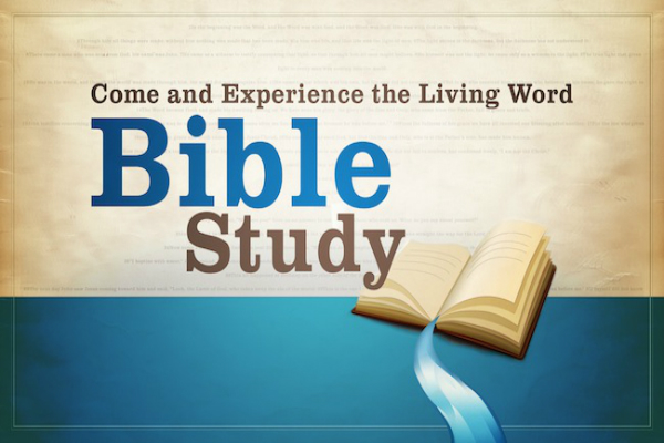 New Bible Study Series!!